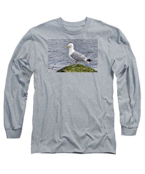 Long Sleeve T-Shirt featuring the photograph Seagull Posing by Glenn Gordon