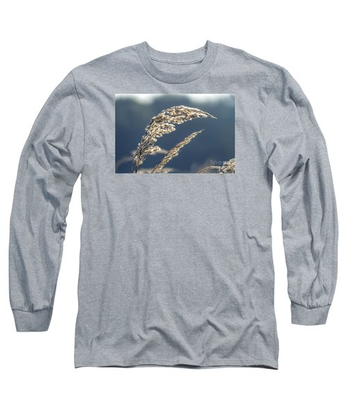 Long Sleeve T-Shirt featuring the photograph Sedge Grass by Odon Czintos
