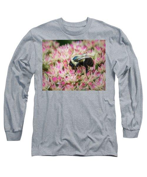 Long Sleeve T-Shirt featuring the photograph Sedum Bumbler by Bill Pevlor