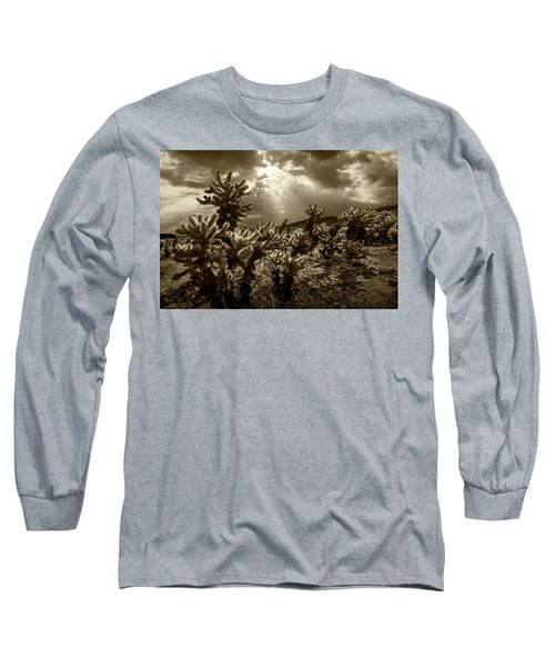 Long Sleeve T-Shirt featuring the photograph Sepia Tone Of Cholla Cactus Garden Bathed In Sunlight by Randall Nyhof