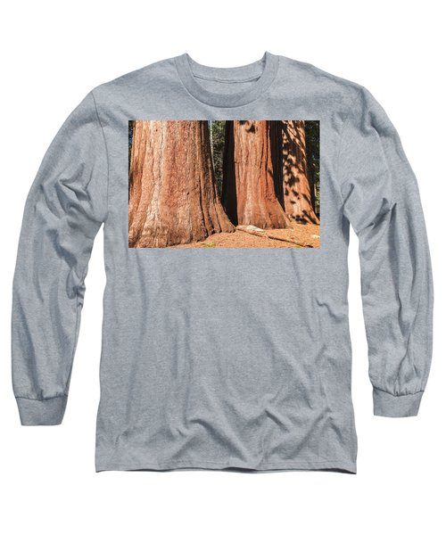 Sequoia Long Sleeve T-Shirt