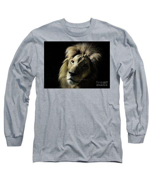 Shadows Long Sleeve T-Shirt by Lisa L Silva