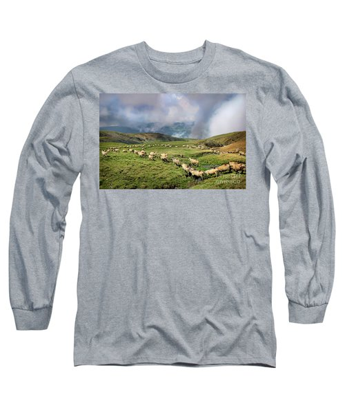 Sheep In Carphatian Mountains Long Sleeve T-Shirt