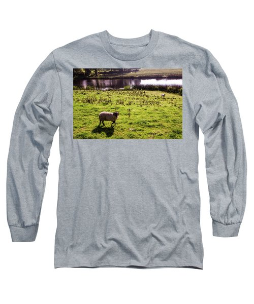 Sheep In Eniskillen Long Sleeve T-Shirt