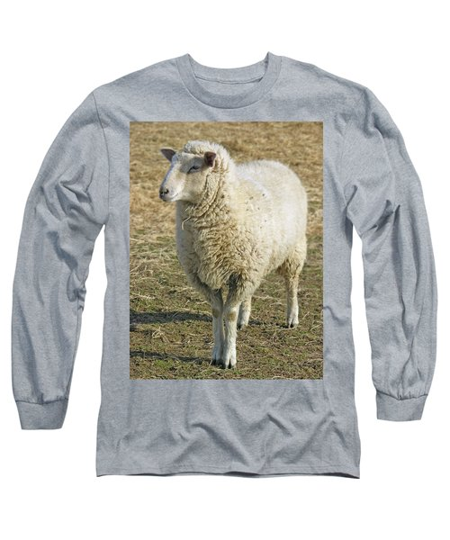 Sheep Long Sleeve T-Shirt by James Larkin