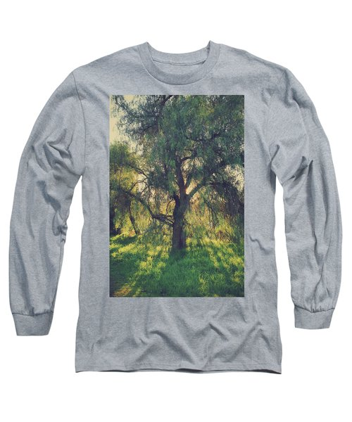 Shine Your Light Long Sleeve T-Shirt by Laurie Search
