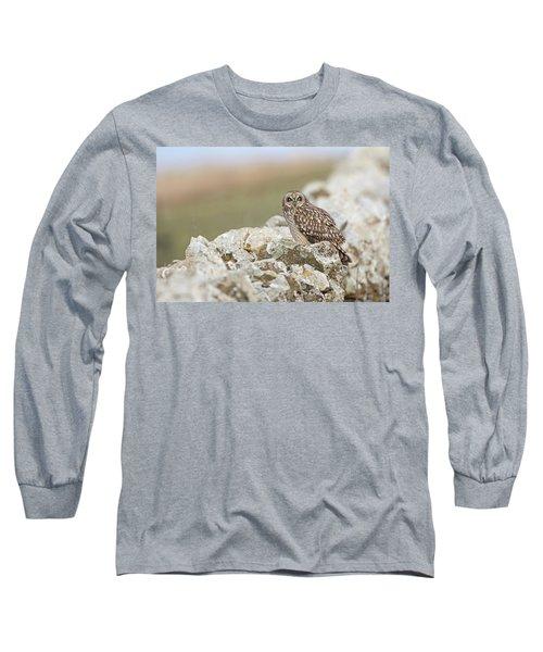 Short-eared Owl In Cotswolds Long Sleeve T-Shirt