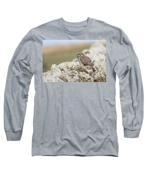 Short-eared Owl In Cotswolds Long Sleeve T-Shirt