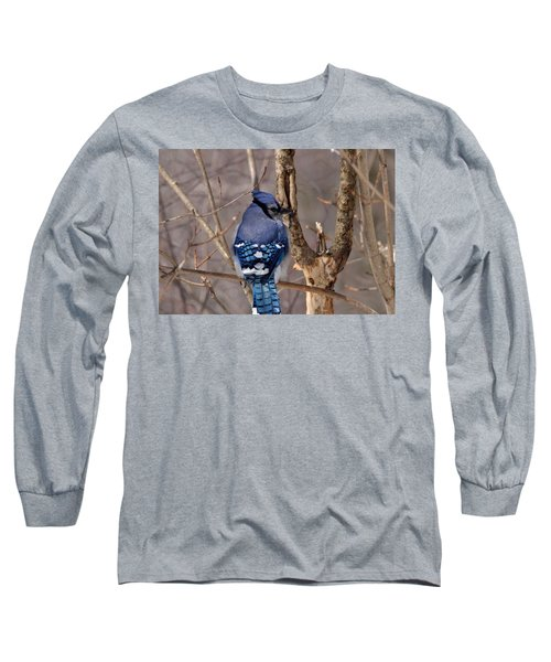 Shy Blue Jay  Long Sleeve T-Shirt by David Porteus