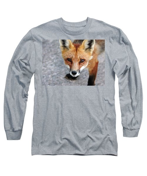 Long Sleeve T-Shirt featuring the photograph Shy Red Fox  by Debbie Oppermann