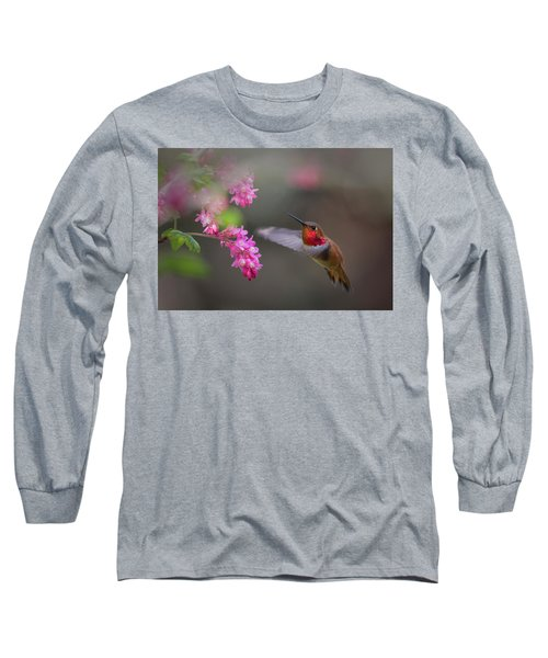 Sign Of Spring Long Sleeve T-Shirt by Randy Hall