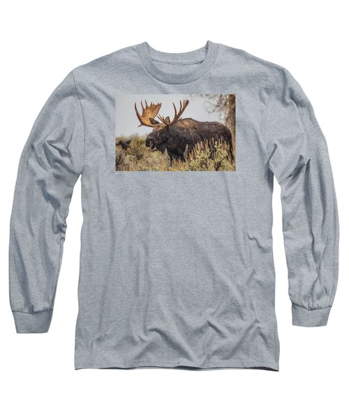 Silly Moose  Long Sleeve T-Shirt