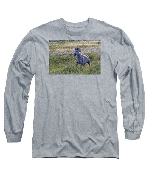 Silver Dun Long Sleeve T-Shirt