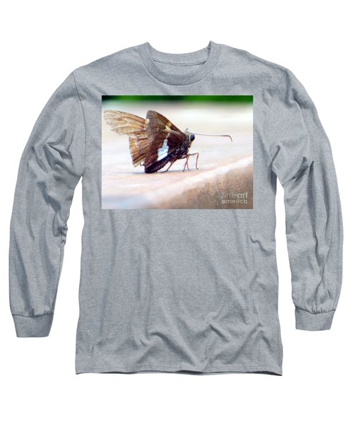 Long Sleeve T-Shirt featuring the photograph Silver Spotted Skipper Butterfly by Rockin Docks Deluxephotos