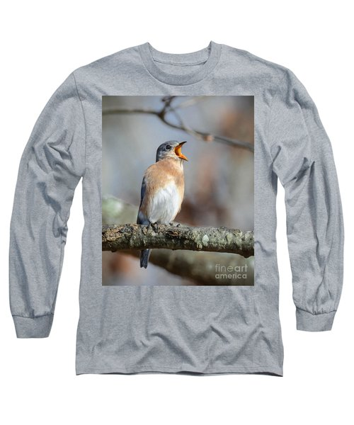 Singing This Song For You Long Sleeve T-Shirt by Amy Porter