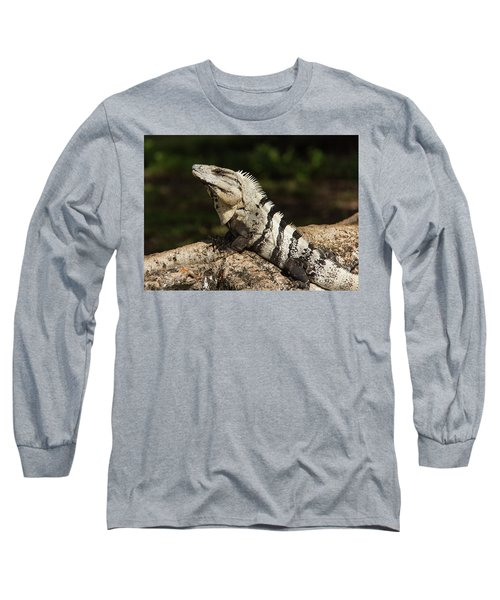 Sir Iguana Mexican Art By Kaylyn Franks Long Sleeve T-Shirt