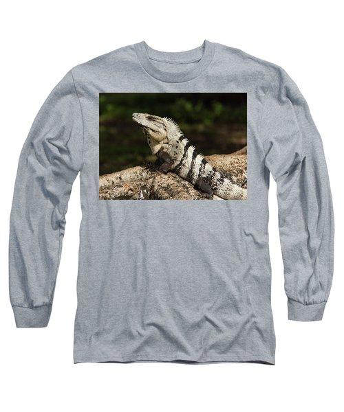 Sir Iguana Mexican Art By Kaylyn Franks Long Sleeve T-Shirt