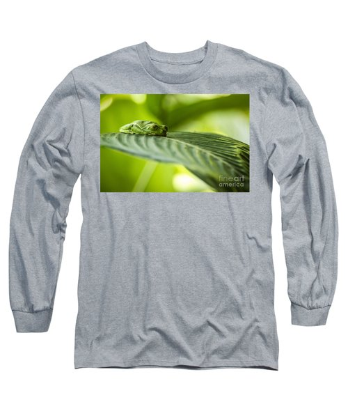 Sleeeepy Long Sleeve T-Shirt
