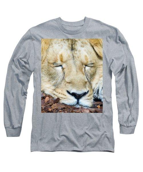 Sleeping Lion Long Sleeve T-Shirt by Colin Rayner