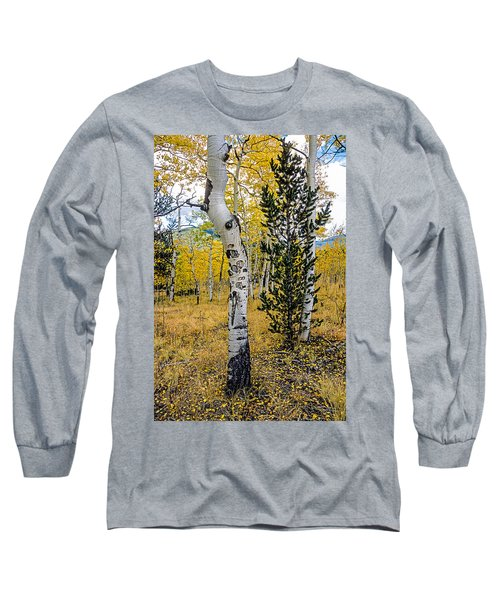 Slightly Crooked Aspen Tree In Fall Colors, Colorado Long Sleeve T-Shirt
