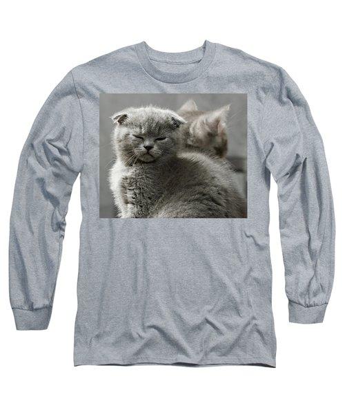 Slumbering Cat Long Sleeve T-Shirt by Evgeniy Lankin