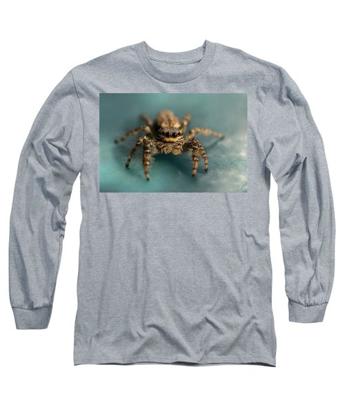 Long Sleeve T-Shirt featuring the photograph Small Jumping Spider by Jaroslaw Blaminsky
