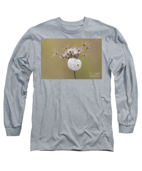 Small Snail Shell Hanging From Plant Long Sleeve T-Shirt by Gurgen Bakhshetsyan
