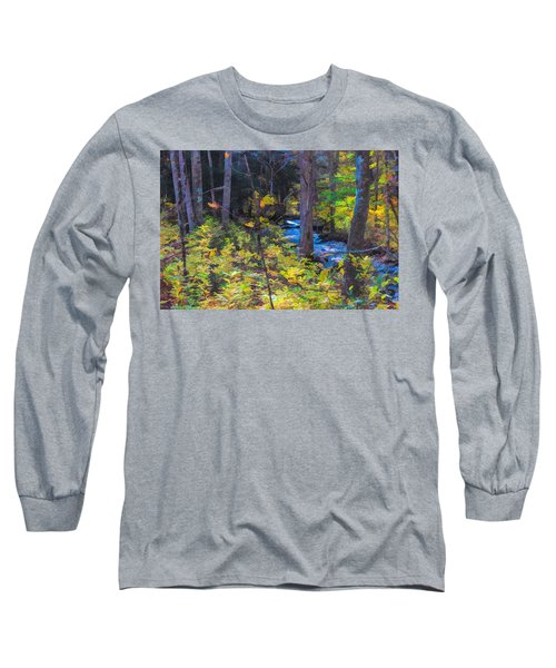 Small Stream Through Autumn Woods Long Sleeve T-Shirt