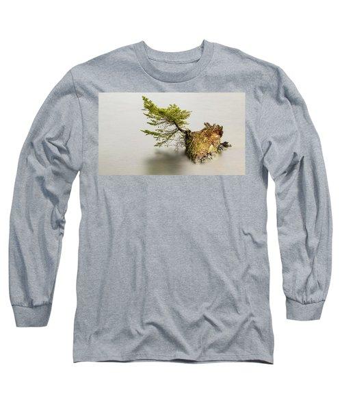 Small Tree On A Stump Long Sleeve T-Shirt