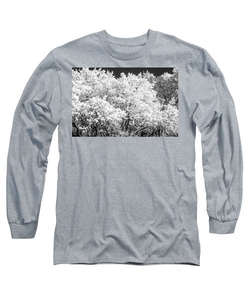 Snow And Frost On Trees In Winter Long Sleeve T-Shirt by John Brink
