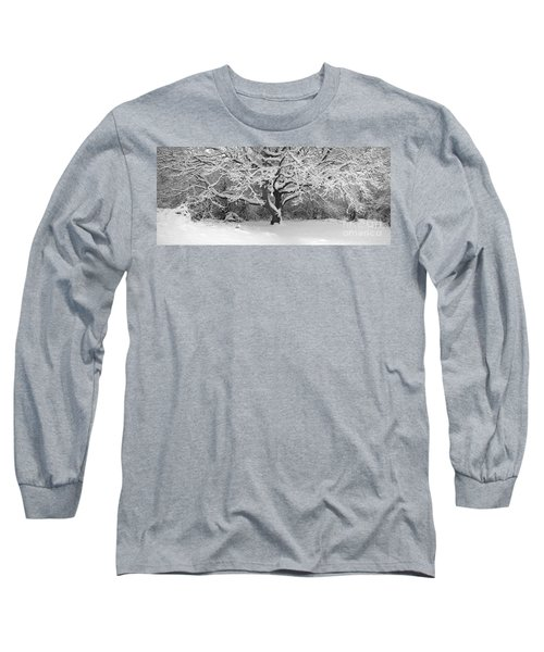 Snow Dusted Tree Long Sleeve T-Shirt