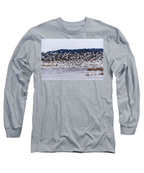 Snow Geese At Squaw Creek Long Sleeve T-Shirt by Edward Peterson