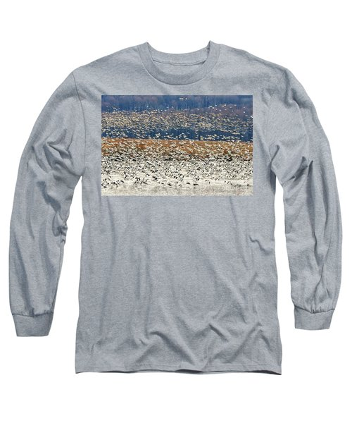 Long Sleeve T-Shirt featuring the photograph Snow Geese At Willow Point by Lois Bryan