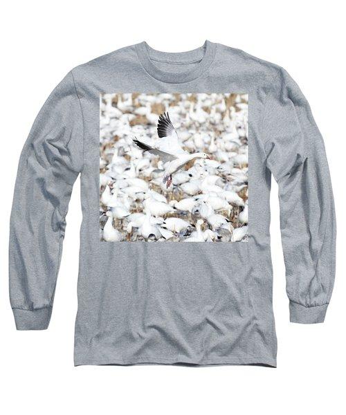 Snow Goose Lift-off Long Sleeve T-Shirt