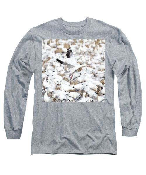 Snow Goose Lift-off Long Sleeve T-Shirt