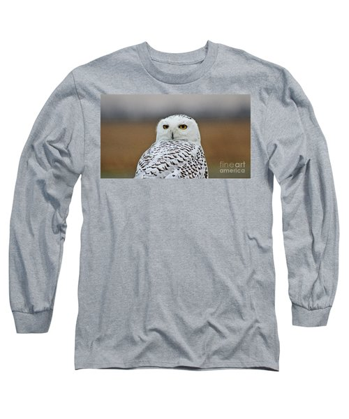 Snow Owl Strare Long Sleeve T-Shirt