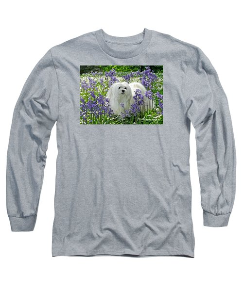 Snowdrop In The Bluebell Woods Long Sleeve T-Shirt by Morag Bates