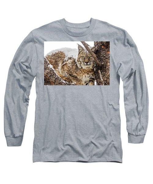 Snowy Bobcat Long Sleeve T-Shirt