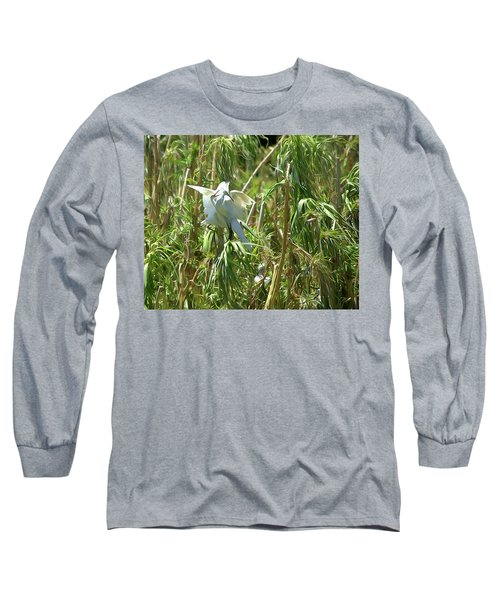 Snowy Egret Feeding Its Young - Digitalart Long Sleeve T-Shirt