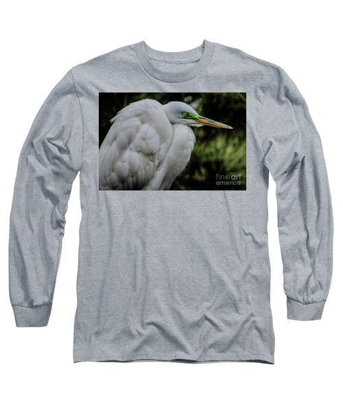 Snowy Egrets Long Sleeve T-Shirt