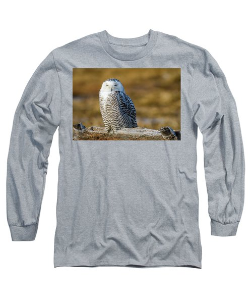 Long Sleeve T-Shirt featuring the photograph Snowy On Log by Michael Hubley