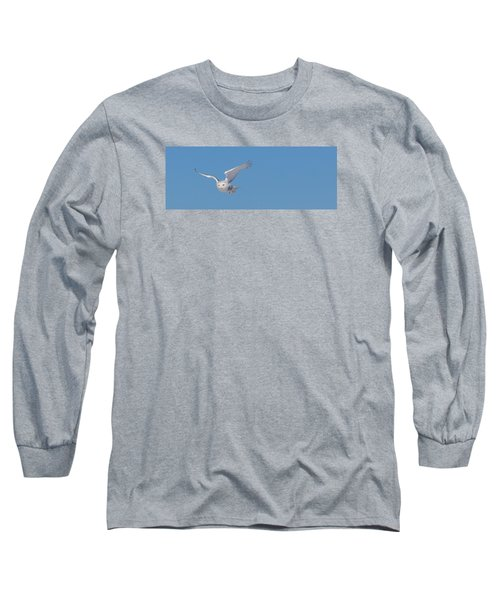 Snowy Owl - Dive Long Sleeve T-Shirt by Dan Traun