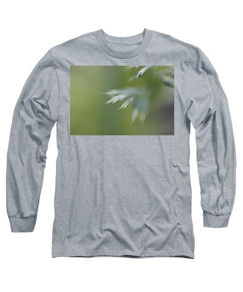 Soft Green Long Sleeve T-Shirt by Michaela Preston