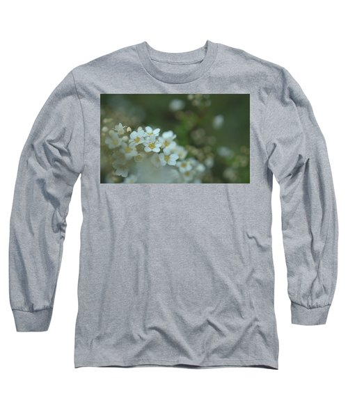 Some Gentle Feelings Long Sleeve T-Shirt