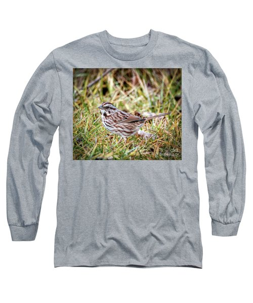Long Sleeve T-Shirt featuring the photograph Song Sparrow Sweetie by Kerri Farley