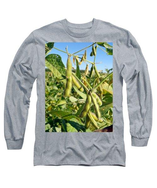 Soybeans In Autumn Long Sleeve T-Shirt