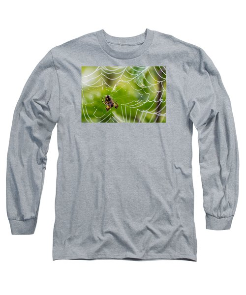 Spider And Spider Web With Dew Drops 05 Long Sleeve T-Shirt
