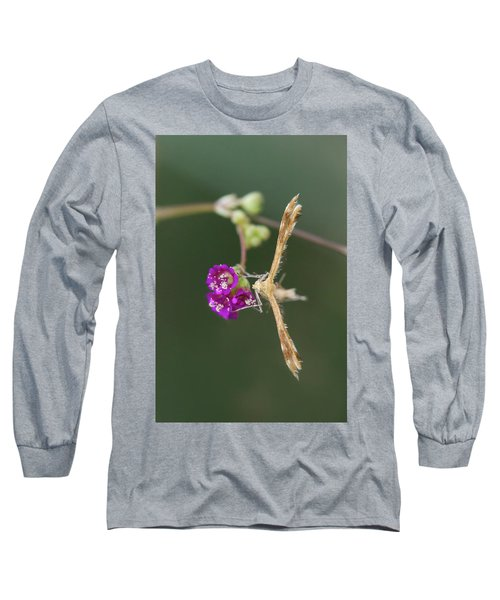Spiderling Plume Moth On Wineflower Long Sleeve T-Shirt