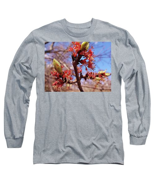 Spring Bloom #1 Long Sleeve T-Shirt