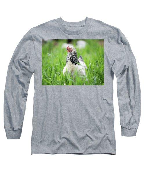 Spring Checken Long Sleeve T-Shirt